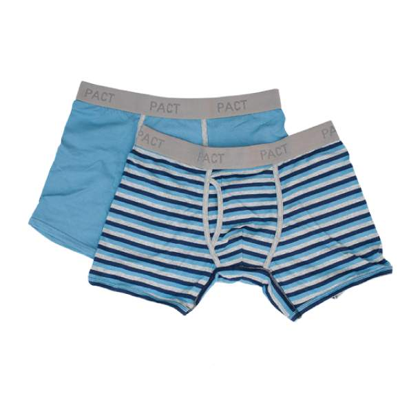 Mens Everyday Charcoal/Blue Stripe Boxer Briefs L